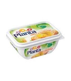 Creme Planta Sabor a Manteiga 250gr