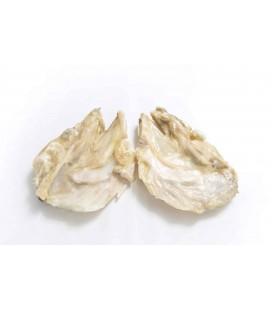 Caras de Bacalhau Salgadas Jumbo Extra cx/ 10 Kg