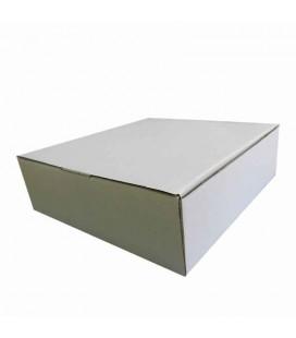 Caixa de Cartao Branca 24x24x10 (venda unid)