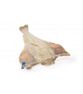 Bacalhau Seco CAXAMAR Graudo Islandia cx/25 kg