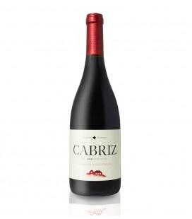 V. T. Quinta Cabriz 0.375 cx/12