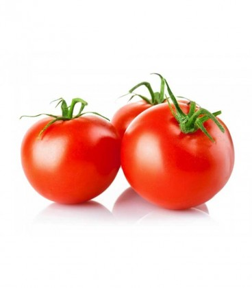 Tomate Salada Cat.II